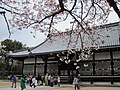 Ninna-ji National Treasure World heritage Kyoto 国宝・世界遺産 仁和寺 京都30.JPG
