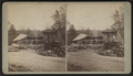 Norton's saw mill, by H. N. Gale & Co..png
