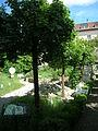 Notre Dame 1 Eichstätt -Garten (3).jpg