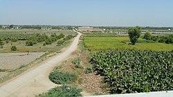 Noushahro Feroze District, Pakistan - panoramio (3).jpg