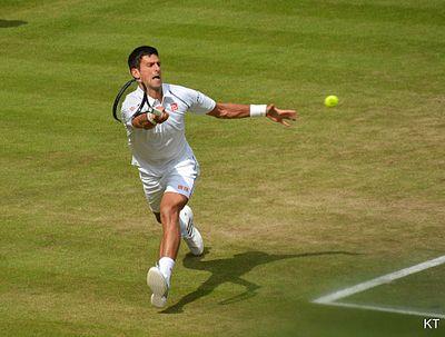 Novak Djokovic (26858245365).jpg