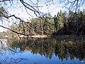 Nuuksio. Kattilajärvi. Foto by Victor Belousov. - panoramio.jpg