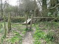 Obstacle course near Henfield - geograph.org.uk - 1216742.jpg