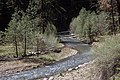 Ochoco National Forest, Mill Creek stream restoration-4 (36594178485).jpg