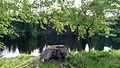 Ochsenbacher Teich.JPG