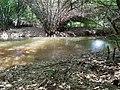 Ogbagirigiri stream, Akpujiogu.jpg