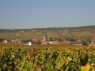 Oger, Marne Part of Blancs-Coteaux in Grand Est, France