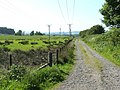 Old Railway Line Path - geograph.org.uk - 930460.jpg