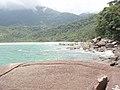 Olhando para a Praia Brava - panoramio.jpg