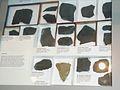 OrdovicianSilurianFossils (2).jpg