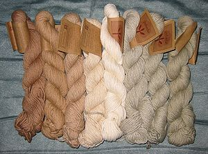 Organic cotton yarn.