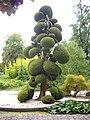 Orléans - parc floral (56).jpg