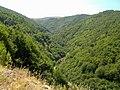 Osogovo-Kameninchitsa-gorge.jpg