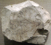 Ostracon02-RamessidePeriod MetropolitanMuseum.png