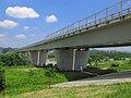 Ota Gunma Watarasegawa Bridge 1.JPG