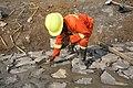 Ouvrier travaux publics 01.jpg