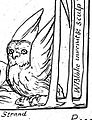 Owl-Illustrations of the Book of Job, object 12 detail.jpg