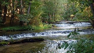 Puszcza Solska Landscape Park