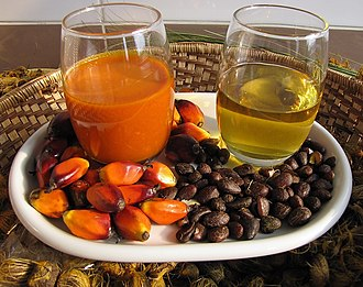 Palm oil - Left, reddish palm oil made from the pulp of oil palm fruit. Right, clear palm kernel oil made from the kernels