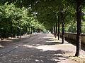 Parc Bercy Paris 3.jpg