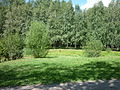 Park dedicated to 50 years of Komsomol - 23 july 2012 - take 4.JPG