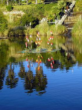 Parque botánico José Celestino Mutis - Wikipedia, la enciclopedia libre