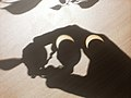 Partial solar eclipse via binoculars (8199471198).jpg