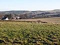 Pastures near Shilburn - geograph.org.uk - 648136.jpg