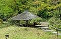 Pavilion - Meiji Shrine - Tokyo, Japan - DSC05512.jpg