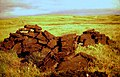 Peat - loosely stacked for drying - geograph.org.uk - 594181.jpg
