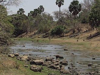 Oti River - Oti River in Pendjari National Park in dry season; Benin left, Burkina Faso right