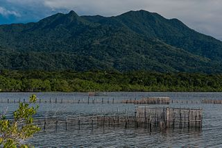 Ilha do Cardoso State Park