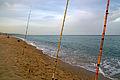 Pescant amb canya.jpg