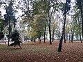 Petrovskyi Park, Poltava (30.10.18).jpg