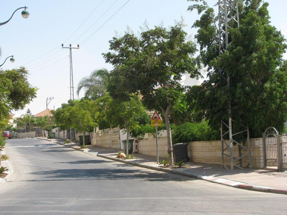 PikiWiki Israel 4561 Dimona renewal