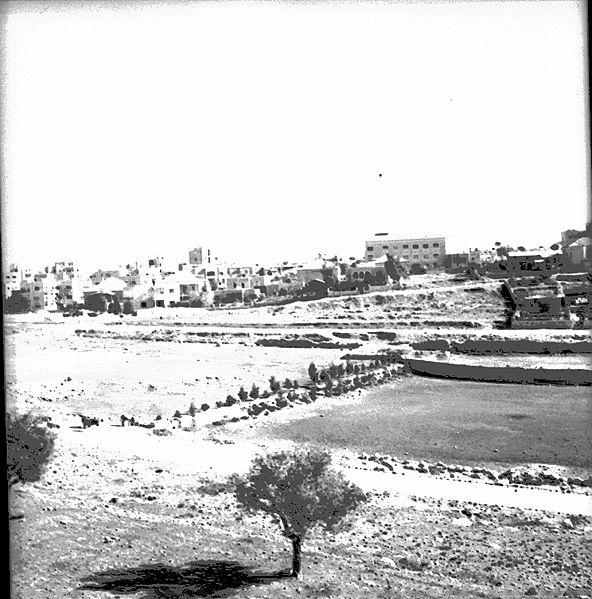 שכונת רחביה בירושלים, 1936