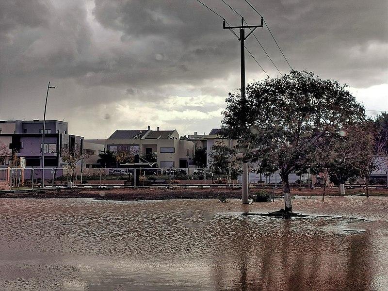 גשם בנחלת יהודה
