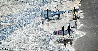 PikiWiki Israel 71727 surfboards.jpg