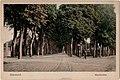 Postcard 17 22564 Roermond, Kapellerlaan recto.jpg