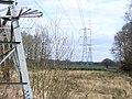 Powerline on Arbrook Common - geograph.org.uk - 1203370.jpg
