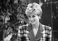 Princess Diana at Accord Hospice.jpg