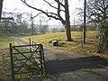 Priory Farm driveway - geograph.org.uk - 140305.jpg