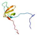 Protein CTTN PDB 1x69.png