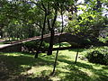 Puente de Mamposteria 2.JPG