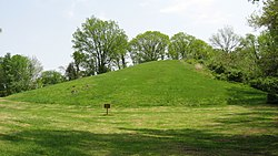 Pyramid Mound from north.jpg