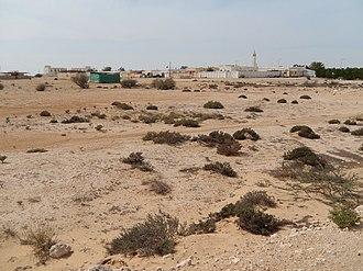 Flora of Qatar - View of Al Jumailiyah village and desert scrub