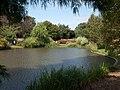Queen Mary's Gardens, Regent's Park - panoramio.jpg