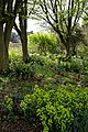 RHS Garden Hyde Hall, Essex, England - view west across hill garden 01.jpg
