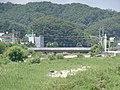 ROK National Route 42 Hakgok Bridge 2.jpg