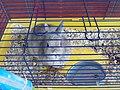 Rabbit (14591985879).jpg